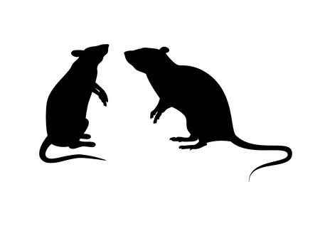 Two rats silhouette vector. Standing rat icon vector. Rats isolated on white background. Mouse clip art Illustration