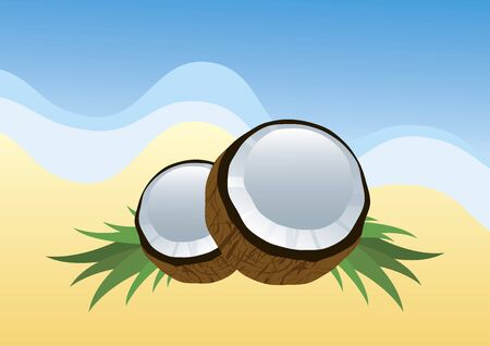 Vector Illustration Keywords: Halved coconut icon. Vector Illustration Keywords: Vector Illustration Keywords: