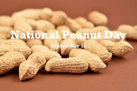 Peanut Day illustration. Peanuts on brown background stock images. Pile of Peanuts with Nutshell. Roasted Peanuts. American delicacy. Peanut Day Poster Zdjęcie Seryjne