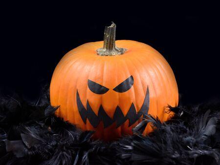 Creepy Halloween Pumpkin stock photography. Halloween pumpkin in black feathers. Grinning pumpkin photo. Scary halloween pumpkin stock images. Halloween pumpkin with spooky face