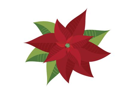 Christmas red poinsettia vector. Poinsettia isolated on a white background. Beautiful red flower icon