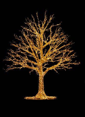 Outdoor illuminated tree stock photography. Golden lighted tree outdoor. | Outdoor tree lighting stock images. Shiny tree on black background. Beautiful Christmas lights
