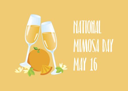 National Mimosa Day vector. Glasses of champagne with orange vector icon. Mimosa celebratory toast vector. Mixed drink with orange juice. Mimosa Day Poster, May 16. Important day