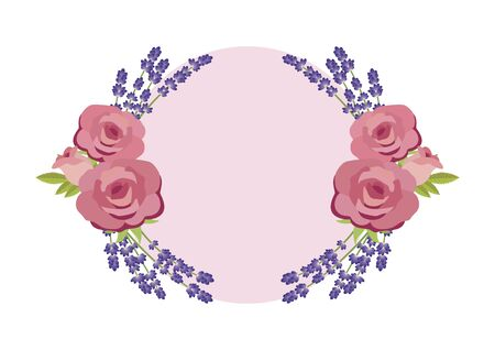 Blank round pink roses and lavender frame vector. Round floral frame with roses and lavender vector. Beautiful frame background with floral pink roses and lavender on a white background
