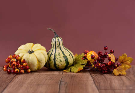 Autumn decoration on a wooden background frame stock images. Autumn decoration on a brown background with copy space for text. Natural fall harvest background stock photo. Autumn border stock images