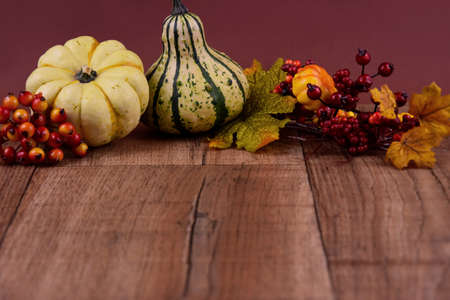 Autumn decoration with pumpkins on a wooden background frame stock images. Natural fall harvest background stock photo. Autumn border stock images. Beautiful autumn still life stock images