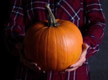 Hands holding orange halloween pumpkin on a dark background stock images. Woman holding beautiful pumpkin in hands stock photo. Autumn decoration images