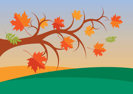 Tree branch with falling leaves in autumn landscape vector. Falling maple leaves in autumn landscape vector. Autumn tree branch in a beautiful landscape vector. Autumn landscape in warm colors