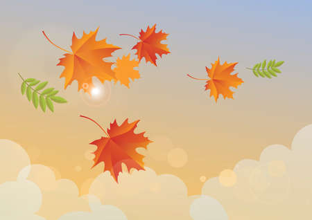 Sunny autumn sky with falling leaves vector. Beautiful autumn leaves and sky vector. Falling maple leaves in autumn landscape vector. Sunny bright autumn sky illustration