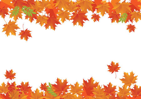 Autumn falling maple leaves decorative white frame vector. Autumn foliage leaves decoration white frame vector. Autumn border with copy space fort text. Floating red orange autumn leaves background