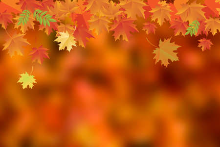 Beautiful autumn background with falling orange leaves stock images. Autumn falling maple leaves decorative frame. Autumn border with copy space fort text. Floating red orange autumn leaves background