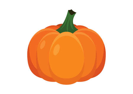Beautiful orange whole pumpkin icon vector. Halloween ripe pumpkin with stem icon isolated on a white background Иллюстрация