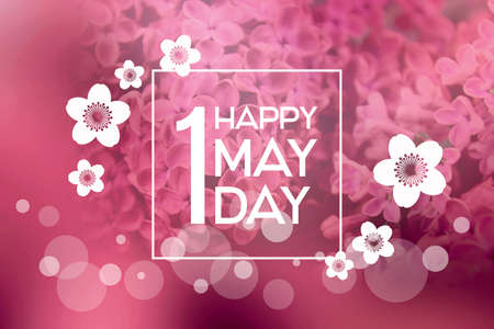Happy 1 May Day stock images. May Day greeting card with blooming flowers. Happy May Day Poster. Happy 1 May Day lettering on a blooming lilac background. Important day Foto de archivo