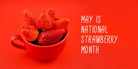May is National Strawberry Month stock images. Fresh strawberries in a red mug stock images. Ripe strawberries on a red background. Red cup with strawberries photo images