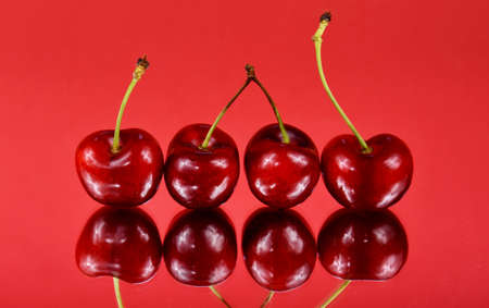 Fresh red cherries in a row on a red background stock images. Sweet cherry fruit berries photo images. Ripe cherries reflection images Imagens