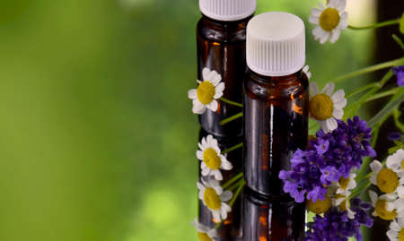 Bottle of essential oil and flowers green frame stock images. Brown glass vial, flowers and herbs with copy space for text. Spa and wellness setting with lavender and chamomile images