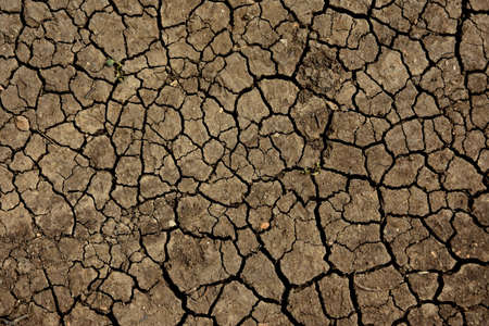 Dry ground texture top view stock images. Cracked dry ground background photo images. Detail of dry ground earth images Imagens