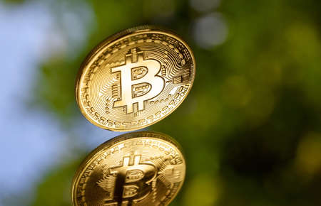 One bitcoin golden coin stock images. Cryptocurrency isolated on a natural background. Digital gold images. Bright gold bitcoin coin photo images