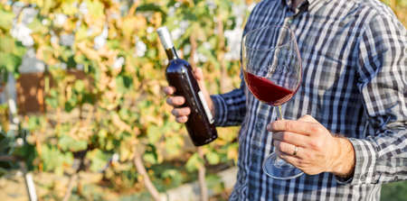 Handsome wine maker holding in his hand a glass of red wine and tasting it, checking wine quality while standing in vineyard. Small business, Homemade wine making concept. Long banner format