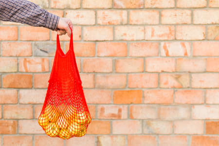 Fresh ripe organic green apples in shopping mesh bag in male hands for food or apple juice. Brick background with copy space. Zero waste, plastic free concept. Sustainable lifestyle
