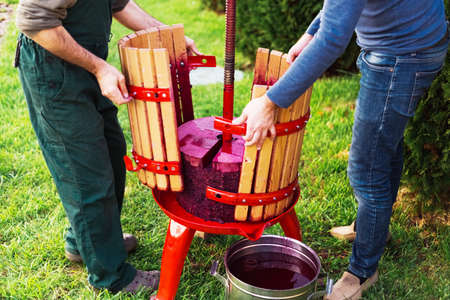 Winemakers open wine press machine with red must, helical screw after picking up juice from grape must. Concept of small craft business. Grape harvest. Special equipment for the winemaking