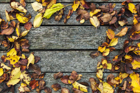 Frame made of autumn dried leaves on old dark wooden vintage background, Barn board with moss. Autumn background composition. Fall, Copy space, flat lay, top view