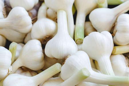 Frischer roher Bio-Knoblauch als Hintergrund. Knoblauch zum Verkauf auf dem Bauernmarkt oder im Laden. Stock Foto Knoblauch als Lebensmittel-Hintergrund