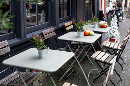 Street cafe during Christmas with pumpkins and Red Skimmia flowers European style. Outdoor tables with chairs on cafe terrace in Amsterdam. Vintage Europe, New Years holidays in retro style outdoor