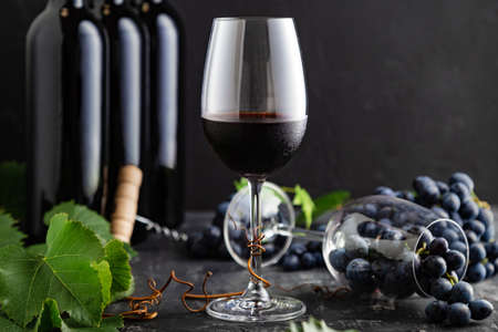 Wine glass with cold red wine. Wine bottles, grape bunches with leaves and vines on dark rustic concrete background. Wine composition on black stone table.