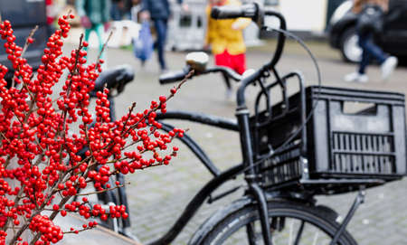 Christmas berry holly or ilex twigs and traditional Netherlands bike outside. Amsterdam urban winter street scenery with Christmas decoration outdoor. European New Year holidays. Banco de Imagens