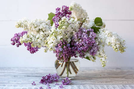 White lilac and purple lilac in glass vase on wooden table. Spring branches of blooming lilac festive bouquet of flowers.