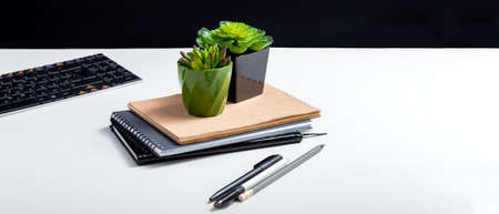 Office artificial flowers succulents in small pots. Landscaping of workplace at home and office. Succulent flowers. Keyboard notepads at home office workplace for remote work. Long web banner