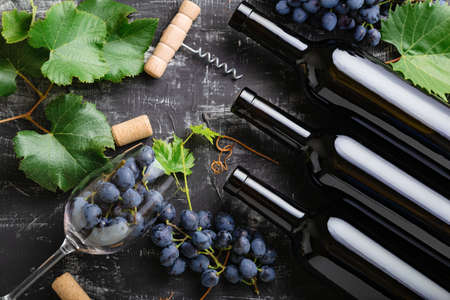 Red wine bottles grapes, grape bunches leaves and vines corkscrew corks wine glasses on dark rustic concrete background. Wine composition on black stone chalk board table. Top view