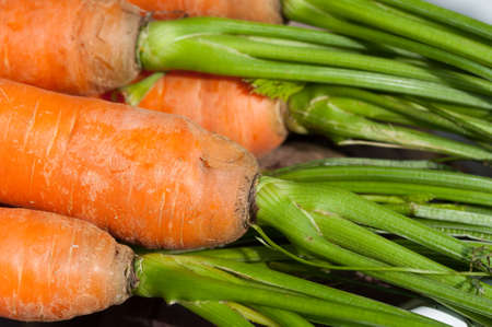 Featured organic carrots forelock Stock Photo