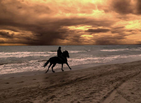 horse races: A caballo en la espectacular puesta de sol  Foto de archivo