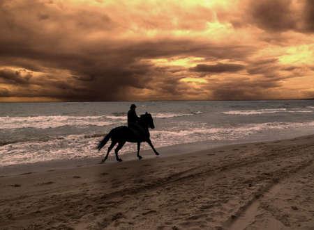 horse saddle: On horseback in dramatic sunset