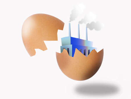 come in: illustration of a startup company which has just come in sight out of a cracked egg Stock Photo