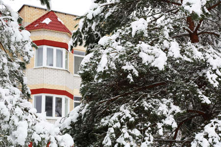 Winter landscape and urban houses. The trees were eating in the snow.
