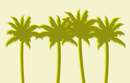 green background: Palm trees, green background Illustration