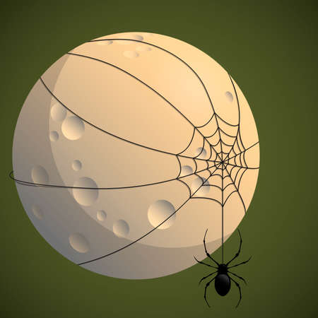 dangling: the spider in the web of moon. Halloween vector illustration