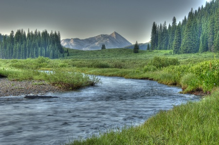 stream: Cold clear stream in summer
