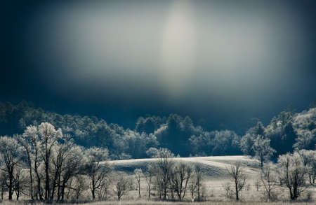The sun rises on fields of frost in Cades Cove  Фото со стока