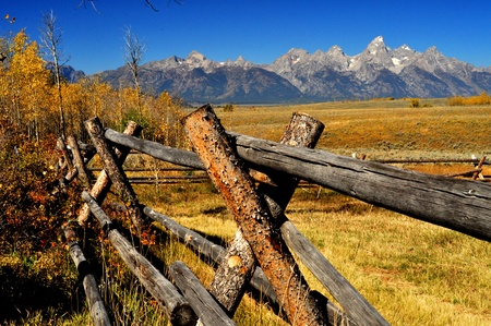 A split rail fence in the fall leads into snow capped mountains  photo