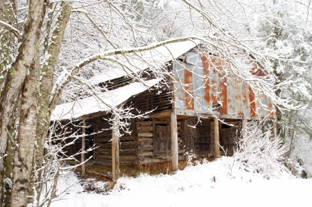 An old rustic barn sits covered with snow  photo