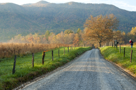 Cades Cove early morning light on Sparks Lane  photo