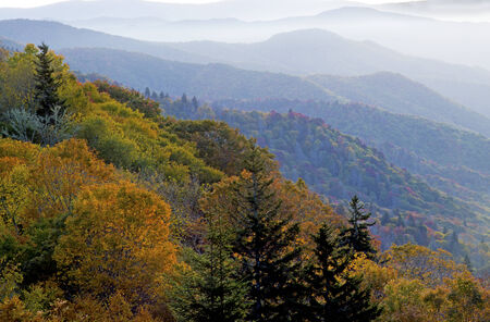 appalachian trail: Early morning fog cover the mountain tops of the Great Smoky Mountains