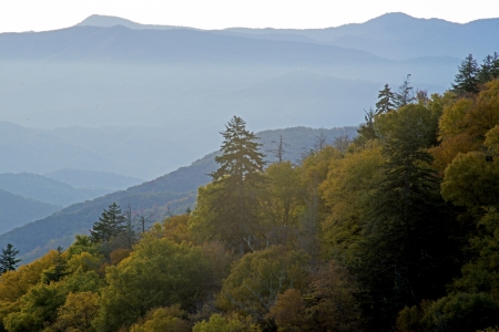 newfound gap: Layers of fog hover in the Great Smoky Mountains