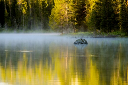 EArly morning light on a lake in Yellowstone National Park