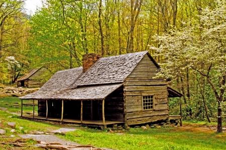 Der Frühling kommt, die The Great Smoky Mountains um ein altes Blockhaus