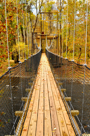 great smokies: Fall leaves surround a swinging bridge above a white water stream